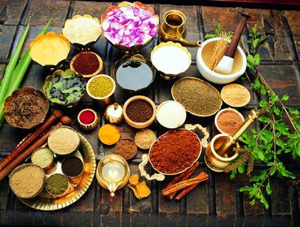 Ayurveda e benessere in India