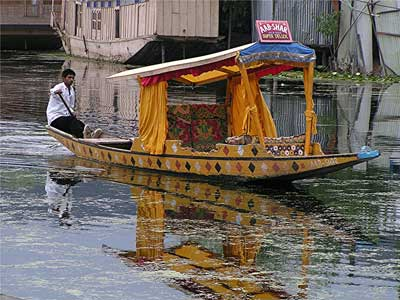 Viaggio in Kashmir India - Srinagar - Shikara
