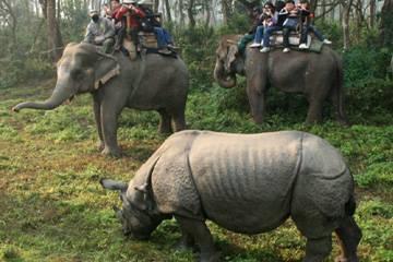 Parco Chitwan - Viaggio in India e Nepal