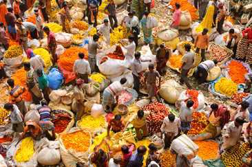 Mercato dei fiori, Kolkata - Viaggio in Sikkim, India