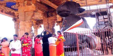 Tanjore tempio, viaggio sud India