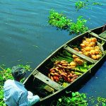 alleppey-top