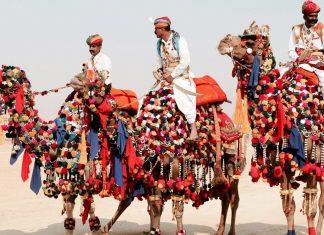 Viaggio fiera di Pushkar - India