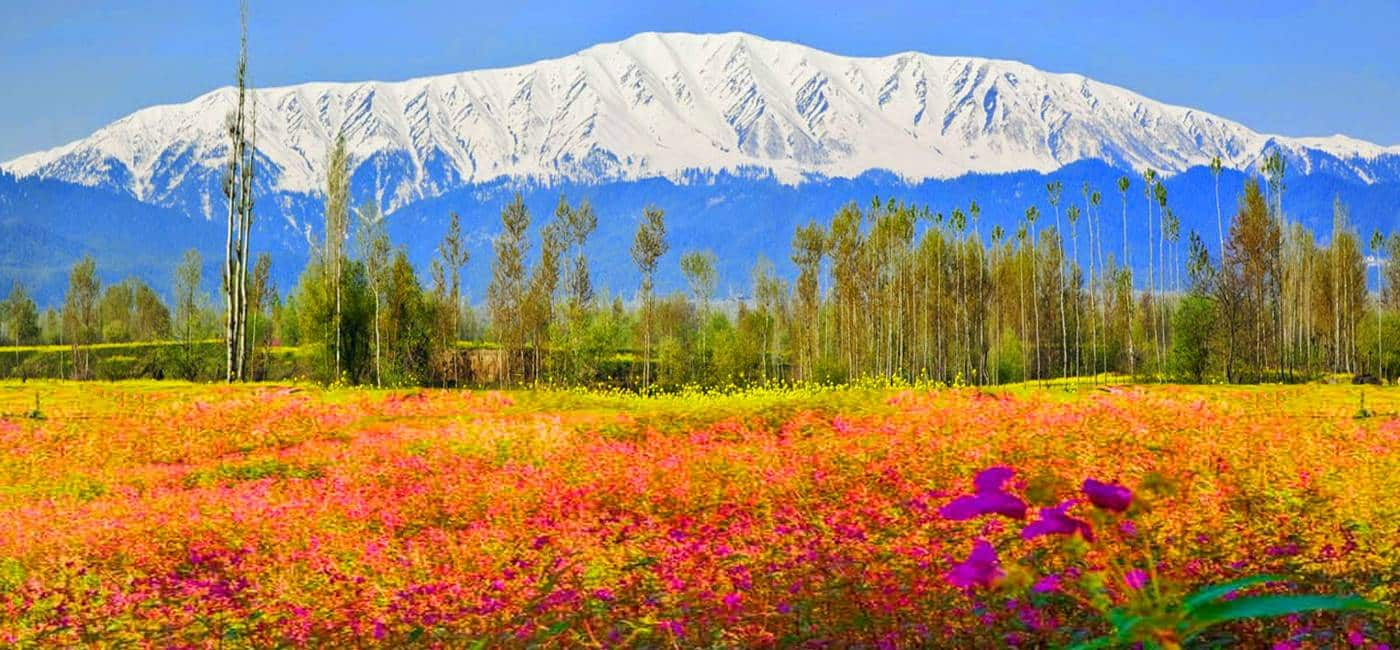 Informazioni Gulmarg - Kashmir, India