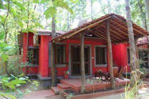 Kanha Jungle Lodge - Kanha, Madhya Pradesh - India