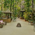 Kanha Jungle Lodge – Kanha, Madhya Pradesh – India