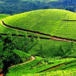 Informazioni Ooty, Tamil Nadu – India